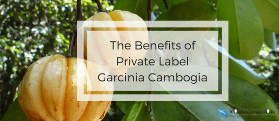 The Benefits Of Private Label Garcinia Cambogia Vox Nutrition
